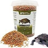 BPS Alimento Comida Gammarus para Tortugas Turtle Terrapin Food 5 Diferentes Modelos para Elegir (Gammarus Alimento 120 g) BP