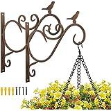 Lewondr Supporto Vasi, Supporto Fiori da Parete in Ferro Antiruggine Carico Massimo 3 kg, Dim 30 x 26 x 2 cm, Accessori Giard