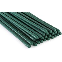 Tingyuan 25 Pack Garden Stakes 8mm x 60cm Plant Stakes Sturdy Plant Support