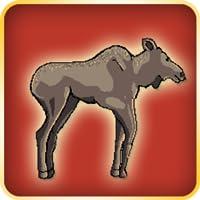 Elch Läufer - Kuh Elch Pro