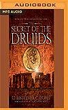 The Secret of the Druids (Mahabharata Quest)