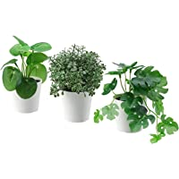 """Ikea Artifi Potted Plant W Pot, Set of 3, in/Outdoor Green6 cm (2 ¼"""")"""