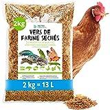 MeerBach & Rose vers de Farine Séchés-2 kg=13000ml-Nourriture pour Poissons, Oiseaux, Tortues, Hérissons, Rongeurs et Reptile