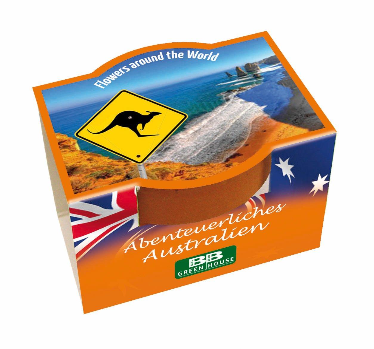 Tee-Geschenkset-Australien