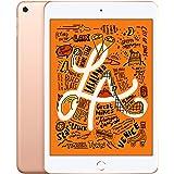 Apple iPad Mini (con Wi-Fi, 64GB) - Oro (Último Modelo)