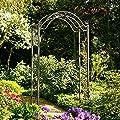 Rosenbogen La Rochelle von Gärtner Pötschke auf Du und dein Garten