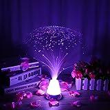 LEDMOMO Lámpara de fibra óptica Lámpara de fibra LED con batería y base de cristal que cambia el color (Tipo 1)