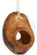 Einzigartige Vogelschaukel aus Kokosnuss mit Fruchtschale zum Knabbern. Natur- Vogelspielzeug für Wellensittich Nymphensittich und alle anderen Heimvögel.
