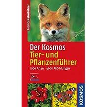 Der Kosmos Tier- und Pflanzenführer, Ting-Ausgabe