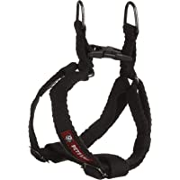 PetsLike Spun Harness Regular Black (size Small), Black, Small, 250 g