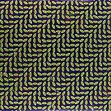 Merriweather Post Pavilion [Vinyl LP]