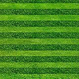 Turf Grass Seeds Golf Fußballfelder Villa Spezieller Grad Evergreen Rasensamen 200pcs hochwertigen Blumen und Samen