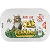 Quik Gerçek Topraklı Kedi Çimi