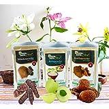 Online Quality Store Reetha Amla Shikakai Powder For Hairs - Reetha 150 Grams,Shikakai 150 Grams, Amla 100 Grams)