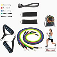 GOCART WITH G LOGO 9 pc Exercise Bands Workout Bands with Carry Bag, Door Anchor, Handles, Ankle Straps for Body Stretching Physical Therapy and Resistance Training in Multi Color