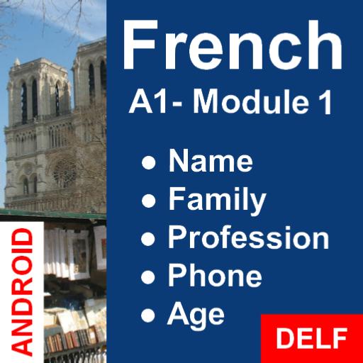 Aprender Francés: Ejercicios Interactivos - A1 (Principiante) / Módulo 1: