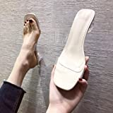 Sandali Zeppa Heeled Scarpe Camminare Piattaforma,Sandali Trasparenti da Donna, Tacchi Alti con Tacco Spesso-Beige_37,Regolab