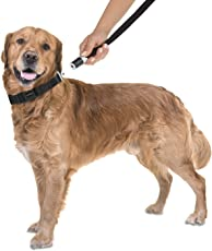 GOLEYGO Hundeleine & Halsband | innovatives Magnet-klick-System mit Kugelstift, unter Vollast lösbar