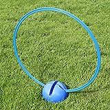 Bild: KombiXFuß mit KombiRing 70 cm in 4 Farben für Agility  Hundetraining blau