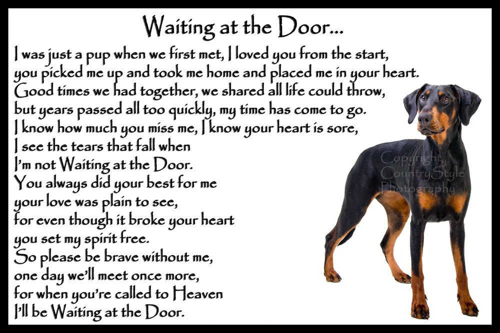 Doberman Pinscher dog bereavement pet loss sympathy memorial Flexible Fridge Magnet – Waiting at the Door