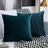 Kussenslopen set met 2 decoratieve vierkante rechthoekige kussenslopen fluweel moderne kussenslopen voor bank bed bank stoel