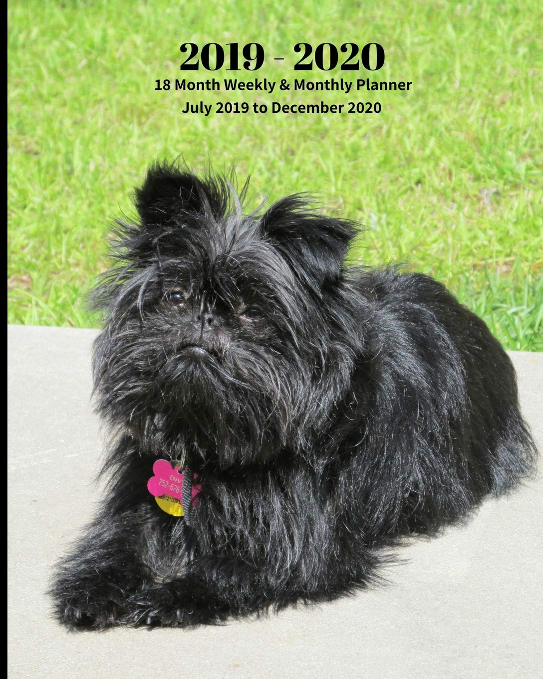 2019 – 2020 | 18 Month Weekly & Monthly Planner July 2019 to December 2020: Affenpinscher Dog Pets Canine Vol 12 Monthly…