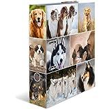 HERMA 7165 segregator z motywem zwierząt DIN A4 zwierzęta psy, szerokość 7 cm, wykonany ze stabilnego kartonu z motywem zwier