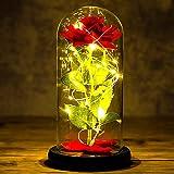 Siebwin Rose Eternelle sous Cloche, La Belle et la Bête Enchanted Rose Élégant Dôme en Verre avec Lumières LED, Beauty and Be