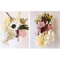 10 modèles Vraies Fleurs pressées séchées Fleurs séchées Naturelles Fleurs séchées à Ongles Multicolores pour résine…