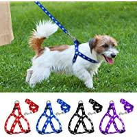 PSK PET MART Nylon Adjustable Printed Dog Harness (Blue, 0.75-inch)