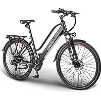 ESKUTE Elektrofahrrad 28 Zoll Pedelec E-Citybike Wayfarer E-Bike mit 36V 10Ah Lithium-Akku, 250W Heckmotor Hollandrad…