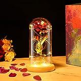 PREUP Rosa Eterna Rosas Bella y Bestia, Elegante Cúpula de Cristal con Base Pino Luces LED Regalos para el Día de San Valentí