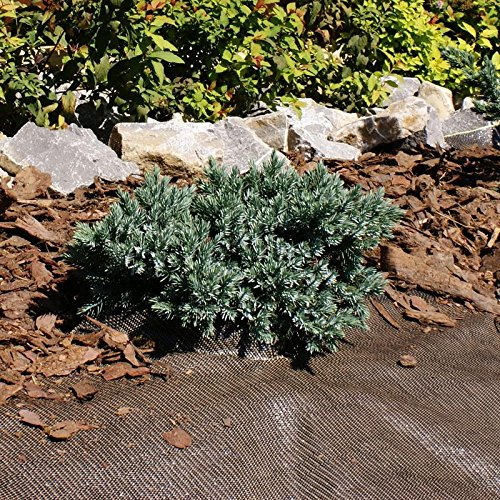 Flora Unkrautblocker Sandkasten 0,9 x 10 m Braun von Noor