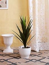 Fourwalls Decorative Artificial Polyurethane Yucca Plant Without Pot (10 cm x 10 cm x 75 cm, Green)