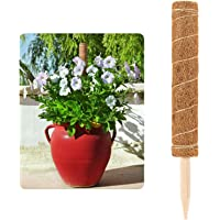 Thrivinger 30cm Coir Totem Pole, Coir Moss Stick Coir Moss Totem Pole, Coco Coir Poles, Plant Support Totem Pole For Plant Support Extension, Climbing Indoor Plants, Creepers