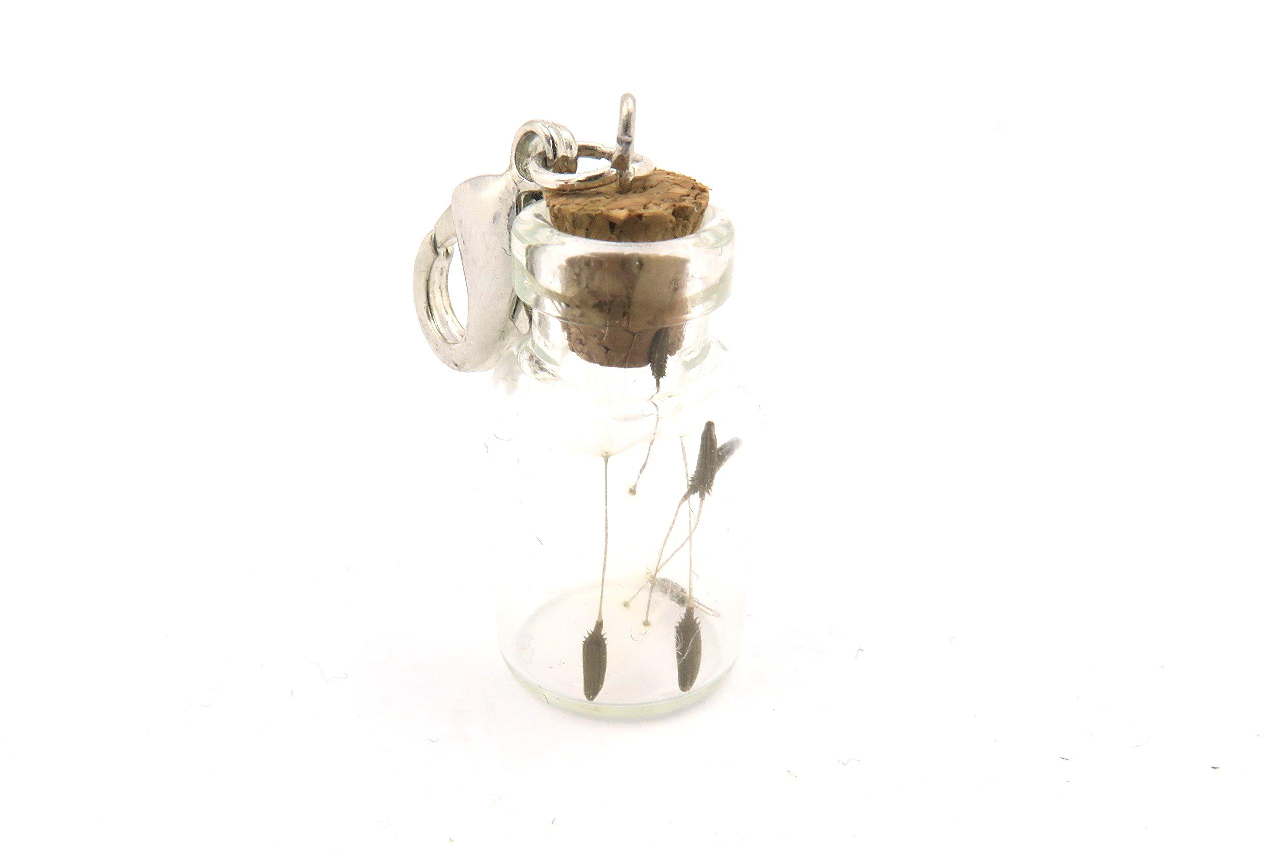 Echte Pusteblumen-Samen im Fläschchen Charm/Anhänger silberfarben Modeschmuck für Ketten oder Anhänger