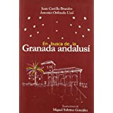 En busca de la Granada andalusi