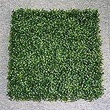 LVZAIXI Künstliche Matte/Matte/Teppich im Freien gefälschter Gras-Rasen-grüner Hoher Dichte natürlicher klarer Garten-Rasen im Freien (Farbe : 02, Größe : 50*50cm)