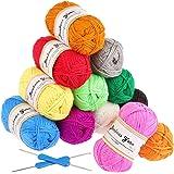 Hilo de Tejer Acrílico Fuyit de 600g (50g x 12 colores) con 2 Agujas de Crochet 100% Ovillos Acrílicos Perfectos para Cualqui