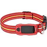 Hangang - localizzatore GPS per cani e gatti, con tracciatore di attività e GPS, resistente all'acqua, si adatta al collare