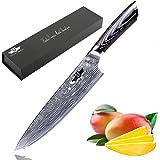 Kitchen Emperor Couteau de Chef, Professionnel Couteau de Cuisine, 20 cm Lame en Acier Carbone Inoxydable Bord de récision et avec poignée Ergonomique Couteau