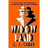 Widowland: 'An absorbing Orwellian dystopia' GUARDIAN (English Edition)