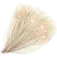 Mwoot 15 pcs Plumes de Paon Paon Plume Naturelles avec des Yeux, pour Bricolage décoration de la Maison de Bijoux Faire…