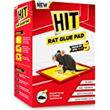 HIT Rat/Mouse Trap Glue Pad, Pack of 5 (Regular Size) - No Smell, Non-Poisonous, Easy to Use, Easily Disposable