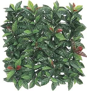 VERDELOOK Sempreverde® Plast, Siepe Artificiale 1x1 m, Foglia photinia, Decorazioni Giardino
