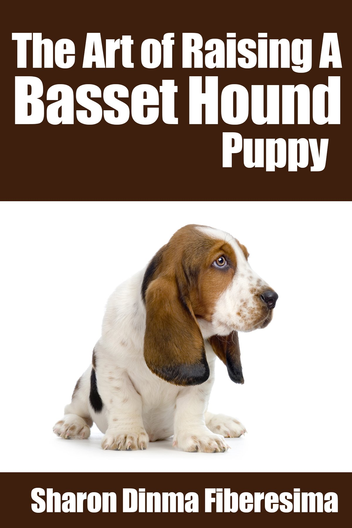 The Art Of Raising A Basset Hound Puppy