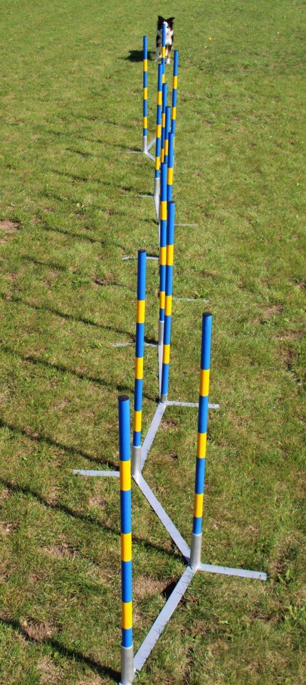 Callieway Orig Agility Slalom Agility Weaves, Funnel Slalom/Channel Weaves (FCI)
