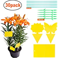 YHmall 30PCS fruit fly traps yellow Fly Paper sticky catcher - Non-Toxic and Eco-Friendly Suit For Multiple Insect