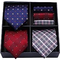 HISDERN Lotto 3 PCS Cravatta da uomo Festa di matrimonio classica Attivita commerciale Polka Dot Check Stripe tinta…