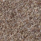 BODENMEISTER BM73501 Teppichboden Nadelfilz Nadelvlies Meterware Objekt beige braun 200 cm und 400 cm breit, verschiedene Längen, Variante: 7 x 2 m